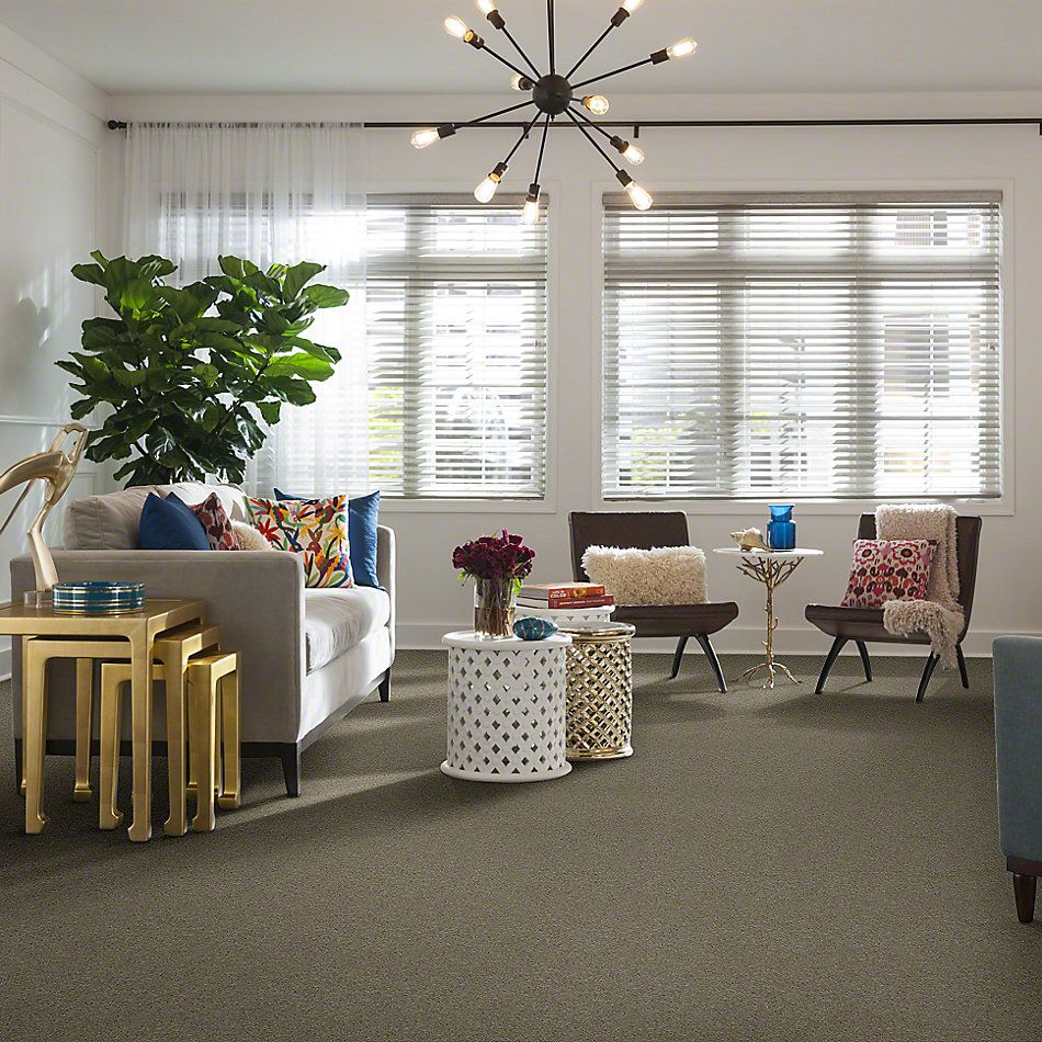 Shaw Floors Shaw Flooring Gallery Challenge Accepted I 12′ Natural Beige 00700_5522G
