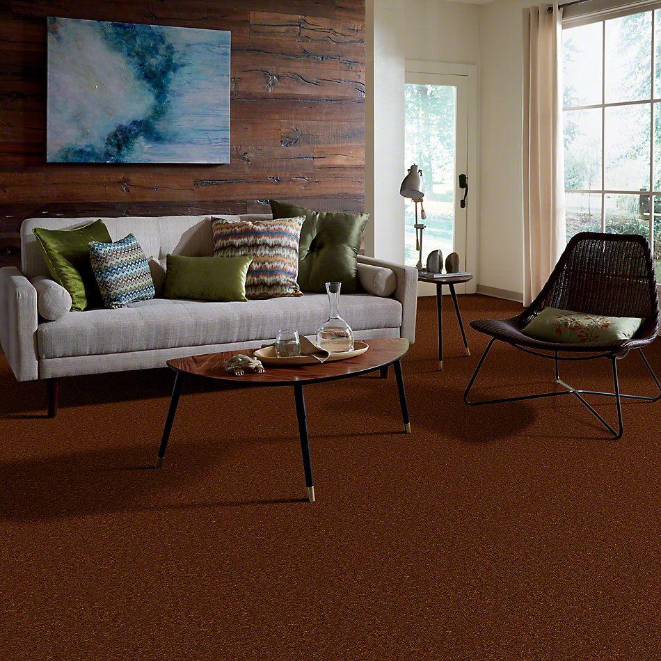 Shaw Floors Shaw Design Center Inspirational Brown Sugar 00700_5C329