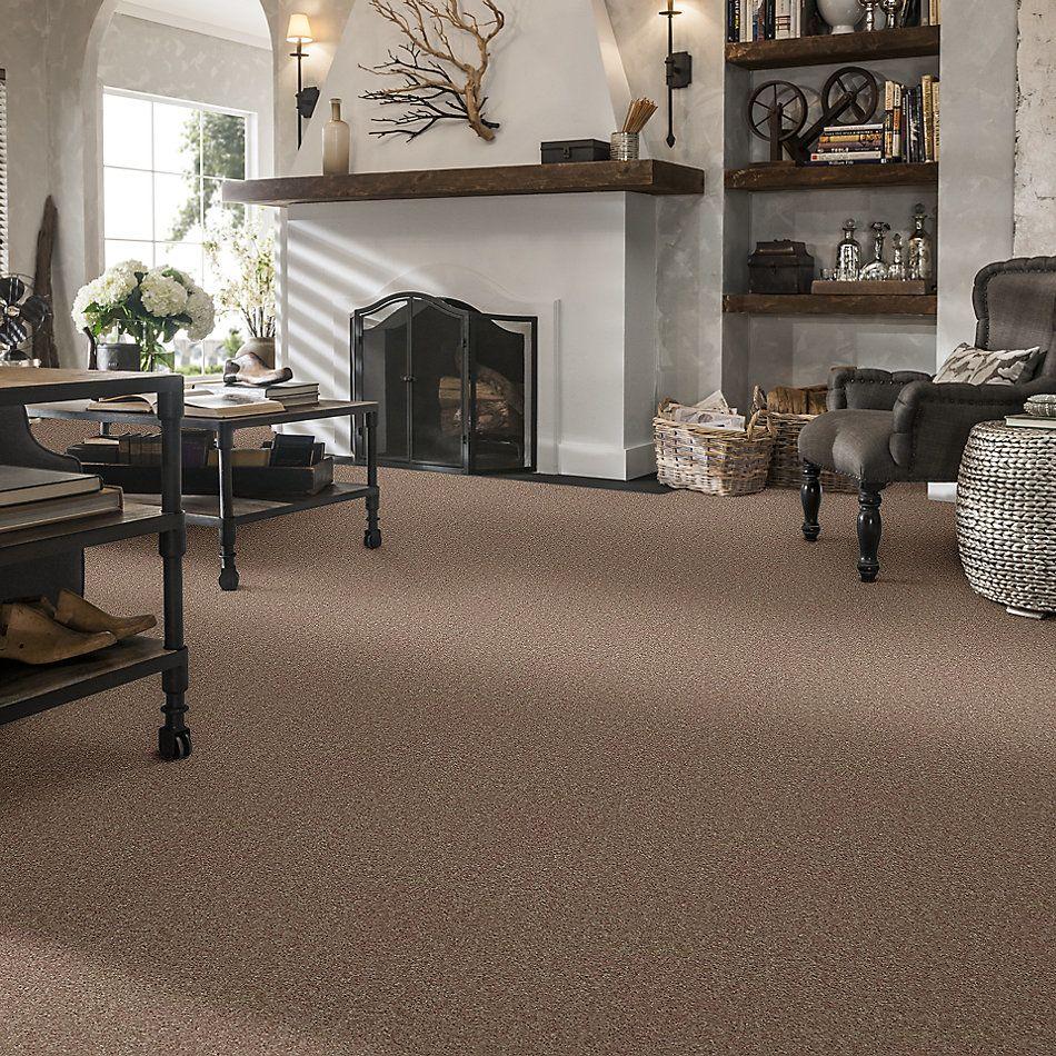 Shaw Floors Shaw Design Center Larimore 12′ Hearth Stone 00700_5C577