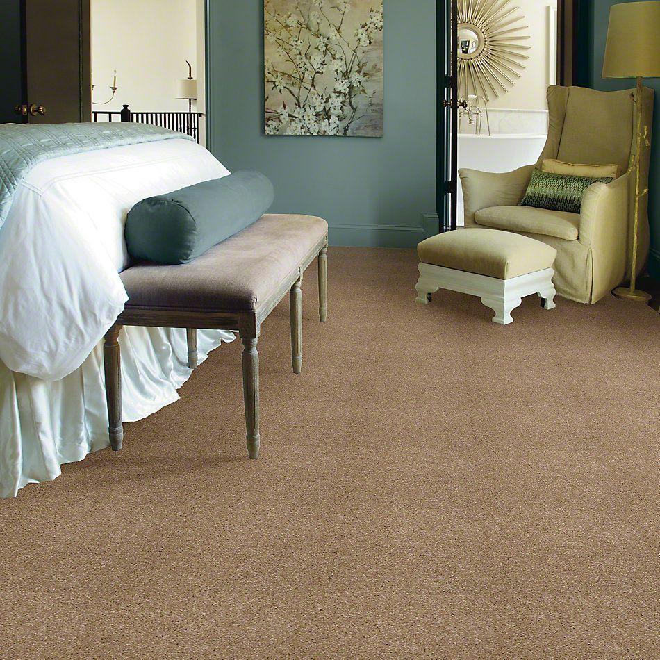 Shaw Floors Queen Versatile Design I 15′ Sea Grass 00700_Q4784
