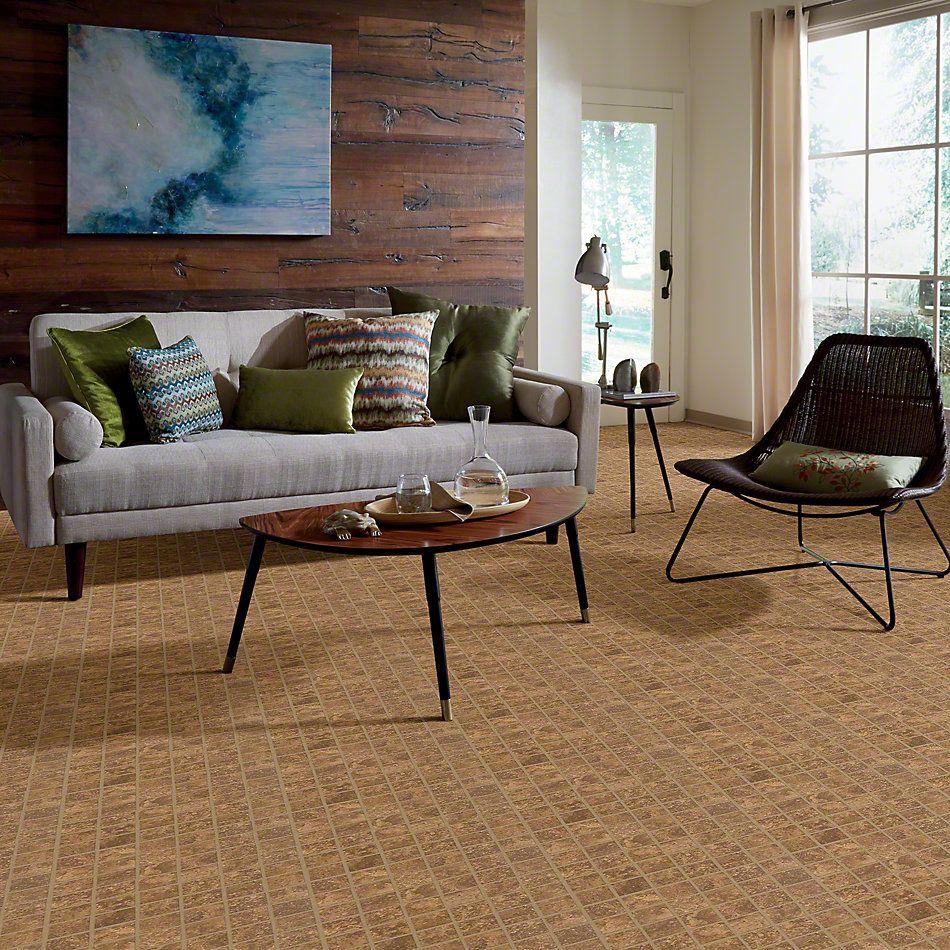 Shaw Floors Ceramic Solutions Sierra Madre Mosaic Foothills 00700_CS24L