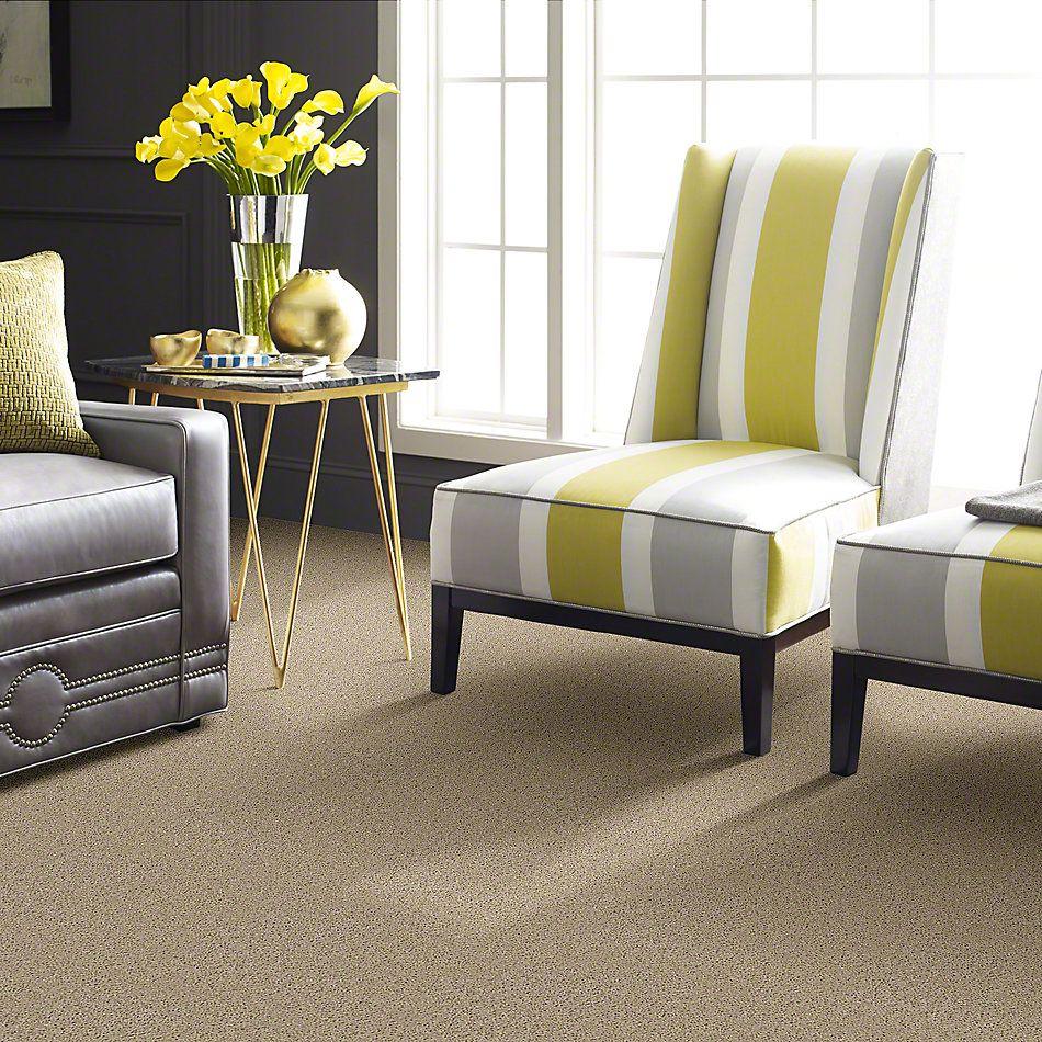 Shaw Floors Fusion Value 300 Putty 00700_E0281