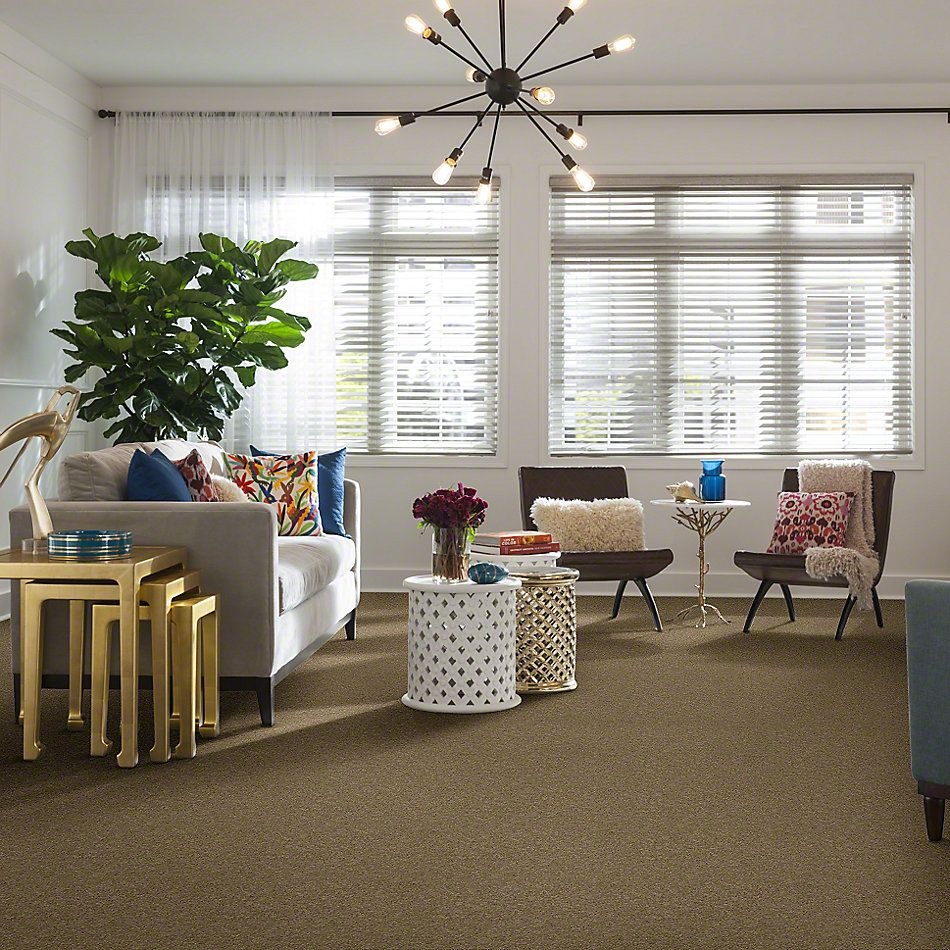 Shaw Floors Enduring Comfort II Driftwood 00700_E0342