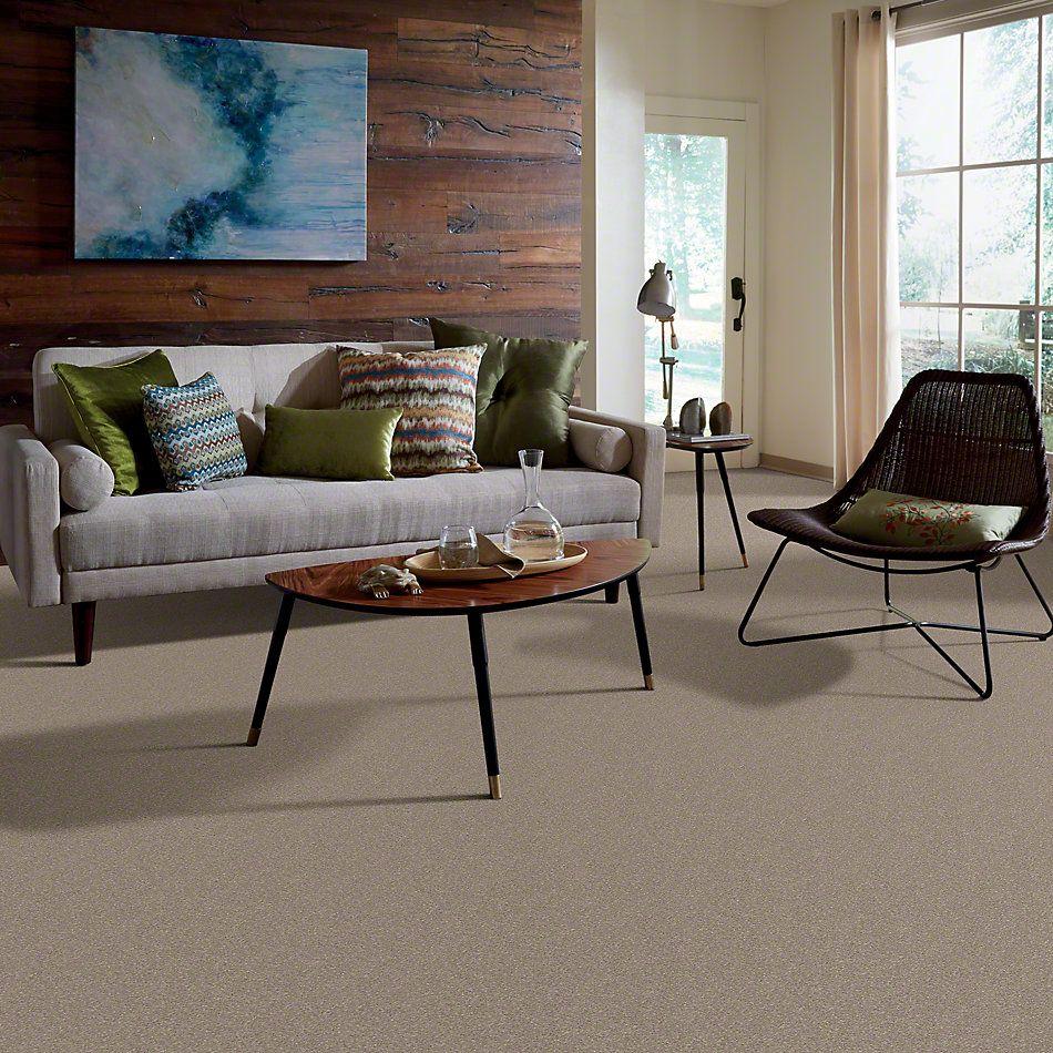 Shaw Floors Clearly Chic Bright Idea II Wild Mushroom 00700_E0505