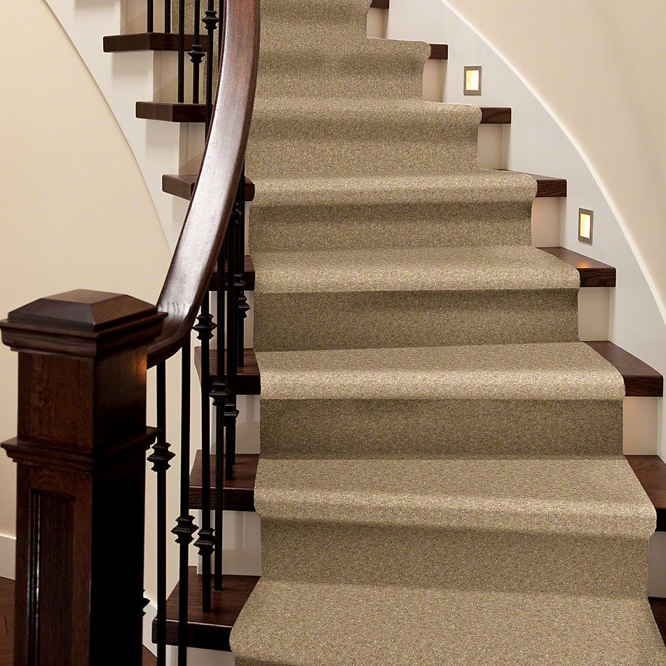 Shaw Floors To The Max Thornwood 00700_E0565