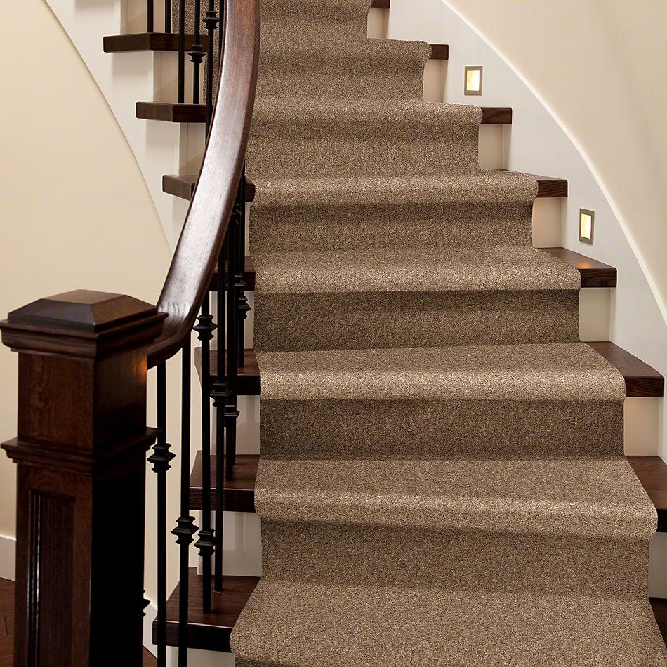 Shaw Floors Value Collections Expect More (s) Net Saddle Tan 00700_E0710