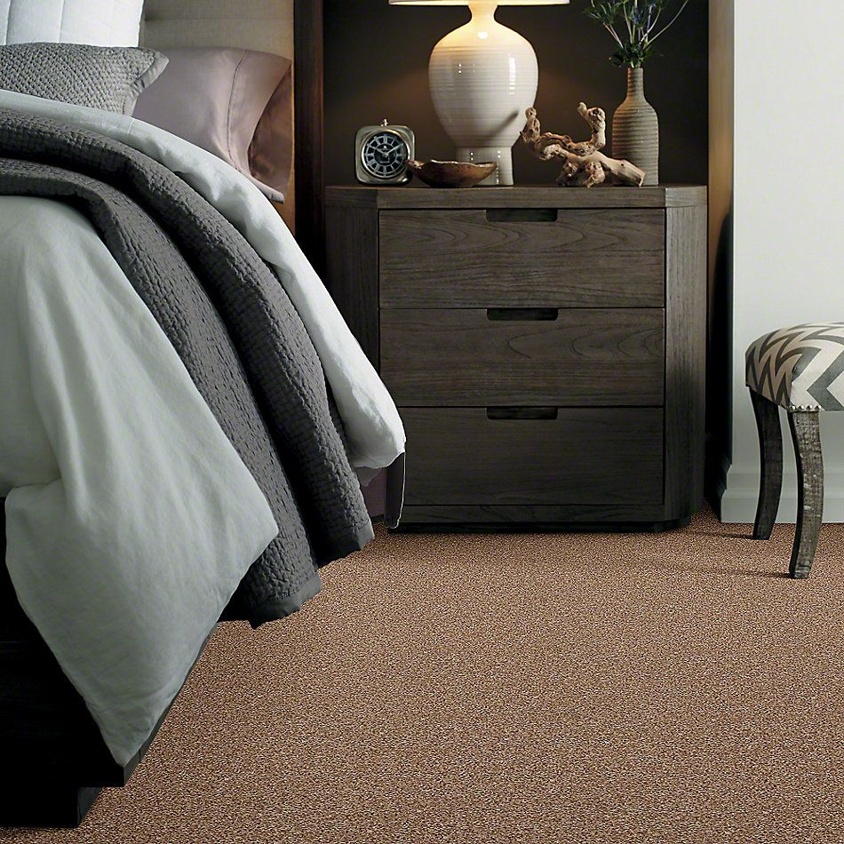 Shaw Floors Value Collections Ride It Out (s) Net Suede 00700_E0711