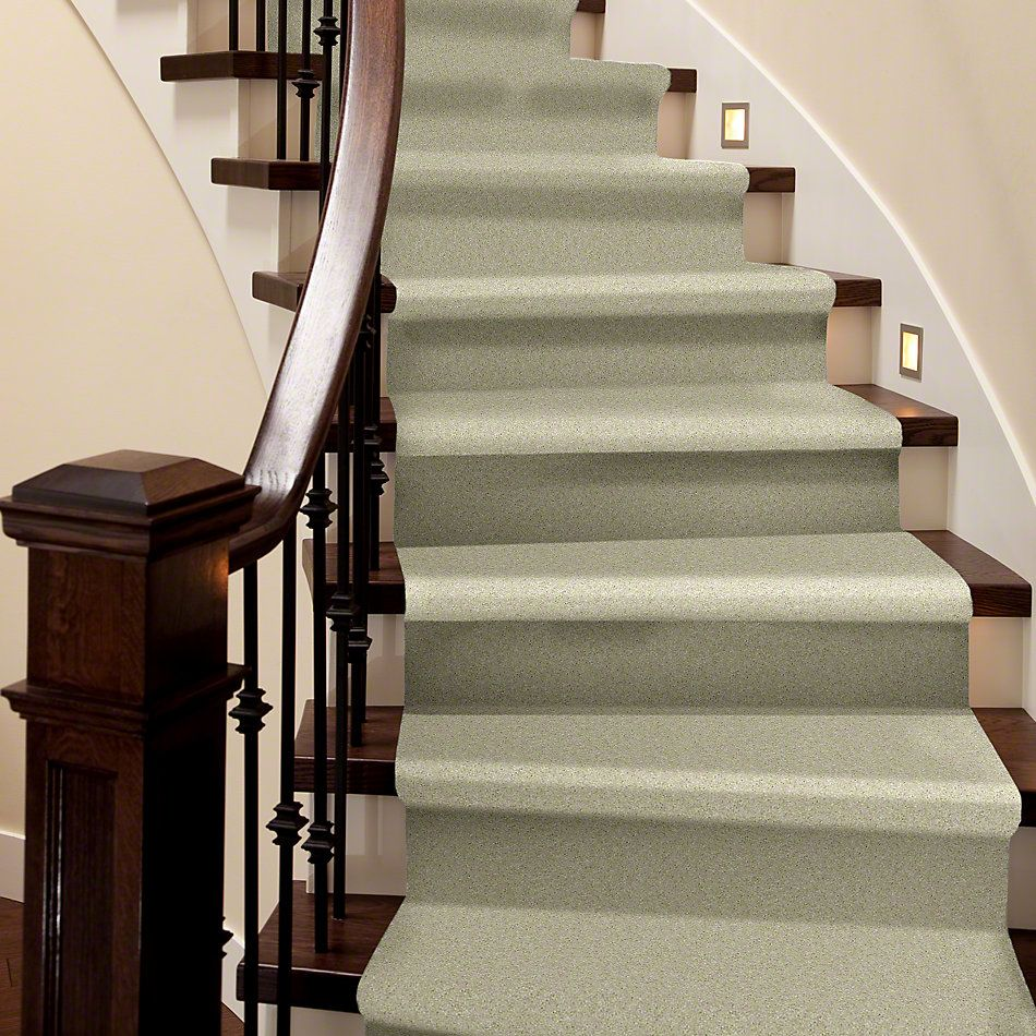 Shaw Floors Value Collections Sing With Me I Net Natural Wood 00700_E0905