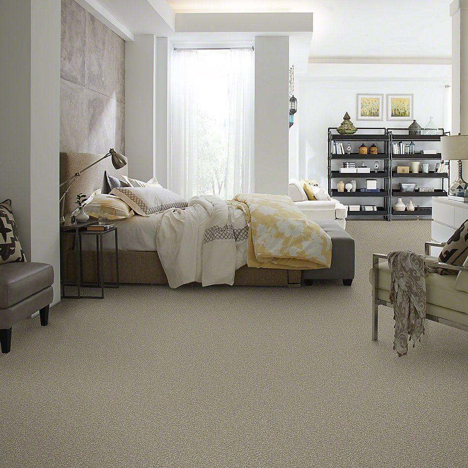Shaw Floors Value Collections Something Sweet Net Khaki Tan 00700_E0924