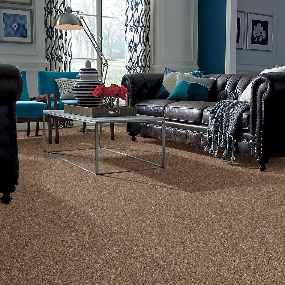 Shaw Floors Value Collections What's Up Net Acorn 00700_E0926