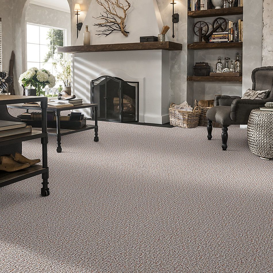 Shaw Floors Value Collections Pure Waters 12′ Net Crumb Cake 00700_E9279