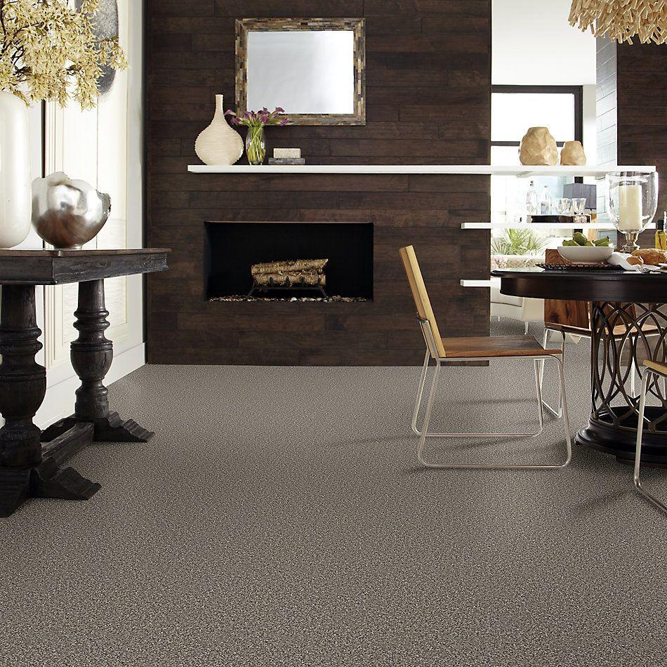 Shaw Floors Value Collections Work The Color Net Bird Bath 00700_E9458