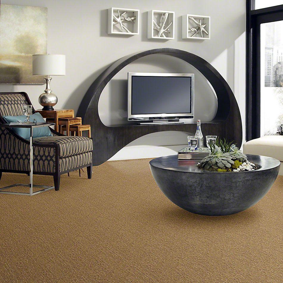 Shaw Floors Foundations Natural Balance 15 Basketry 00700_E9635
