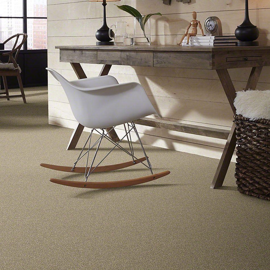 Shaw Floors Bellera Points Of Color I Khaki 00700_E9642