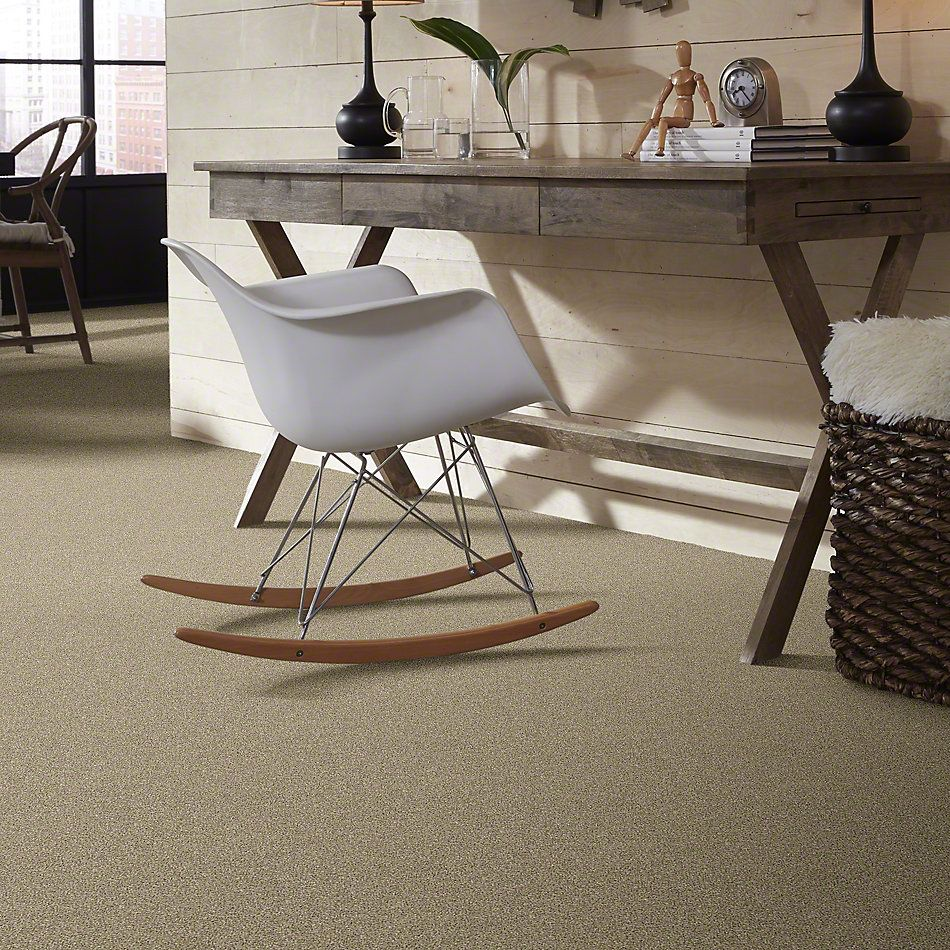 Shaw Floors Bellera Points Of Color II Khaki 00700_E9643