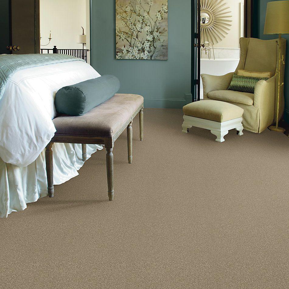 Shaw Floors Bellera Basic Rules Net Khaki 00700_E9782