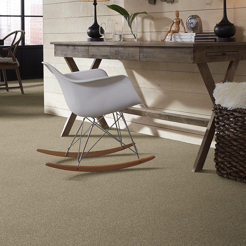 Shaw Floors Bellera Just A Hint I Net Khaki 00700_E9783