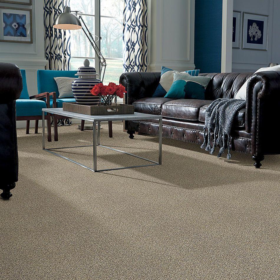 Shaw Floors Bellera Perpetual II Net Khaki 00700_E9788