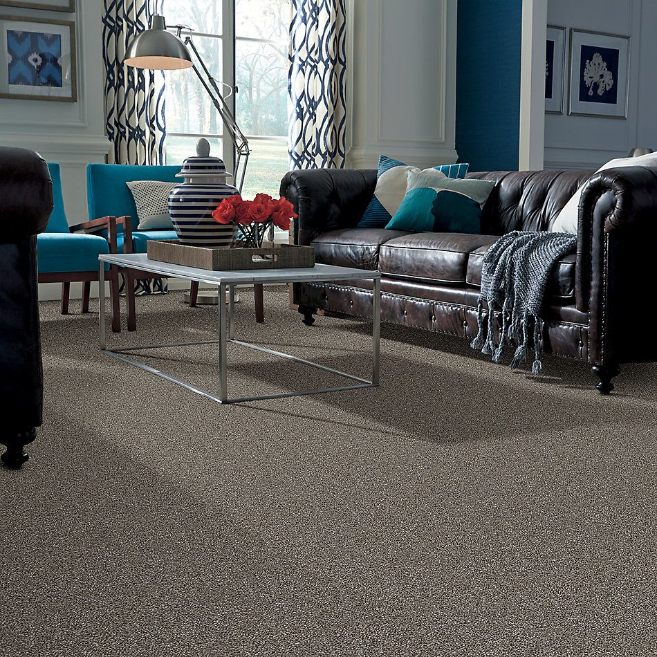 Shaw Floors Value Collections Shake It Up Tweed Net English Oak 00700_E9858