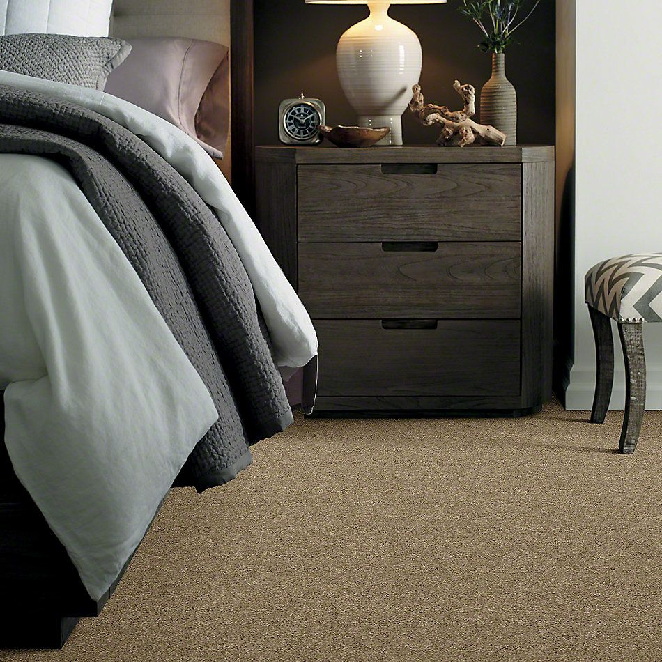 Shaw Floors SFA Loyal Beauty I Driftwood 00700_EA162