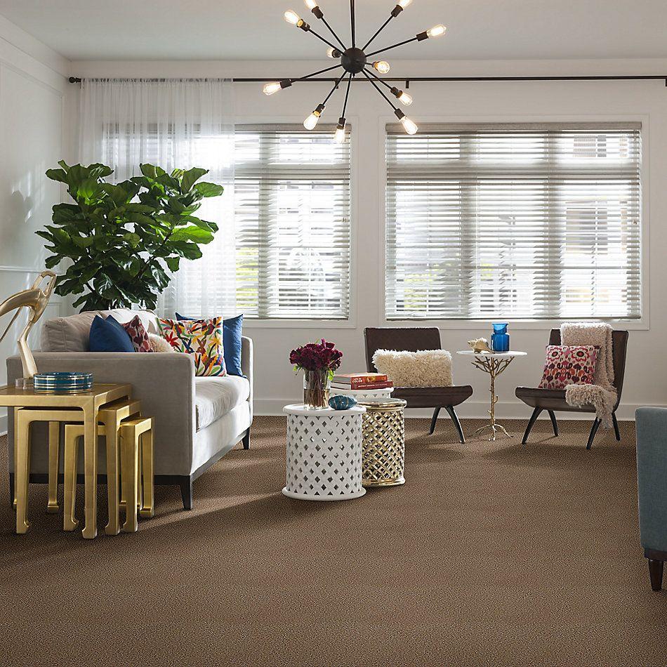 Shaw Floors SFA Dakota Springs Veranda 00700_EA604