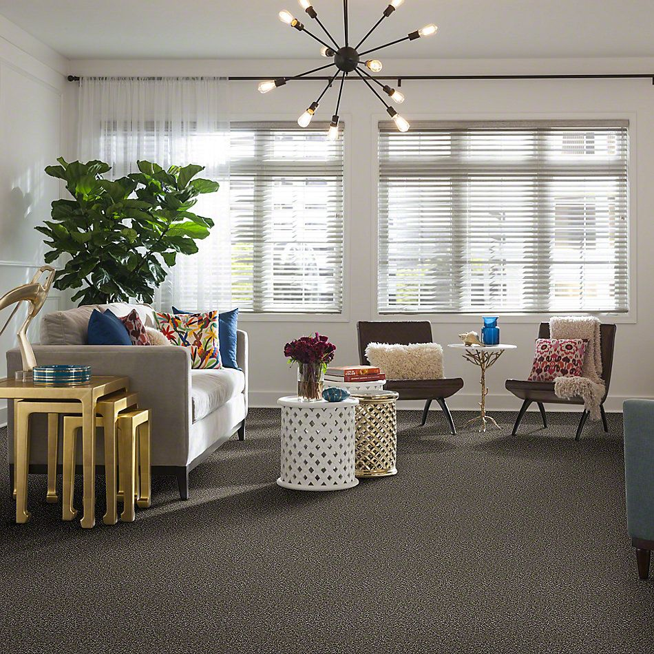 Shaw Floors Simply The Best Breathe & Reflect Bird Bath 00700_EA688
