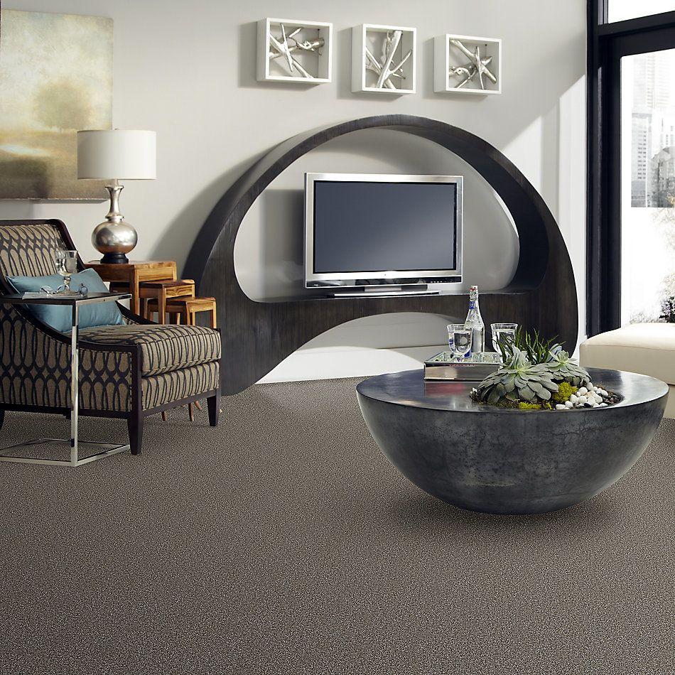 Shaw Floors Value Collections Breathe & Reflect Net Bird Bath 00700_EA720