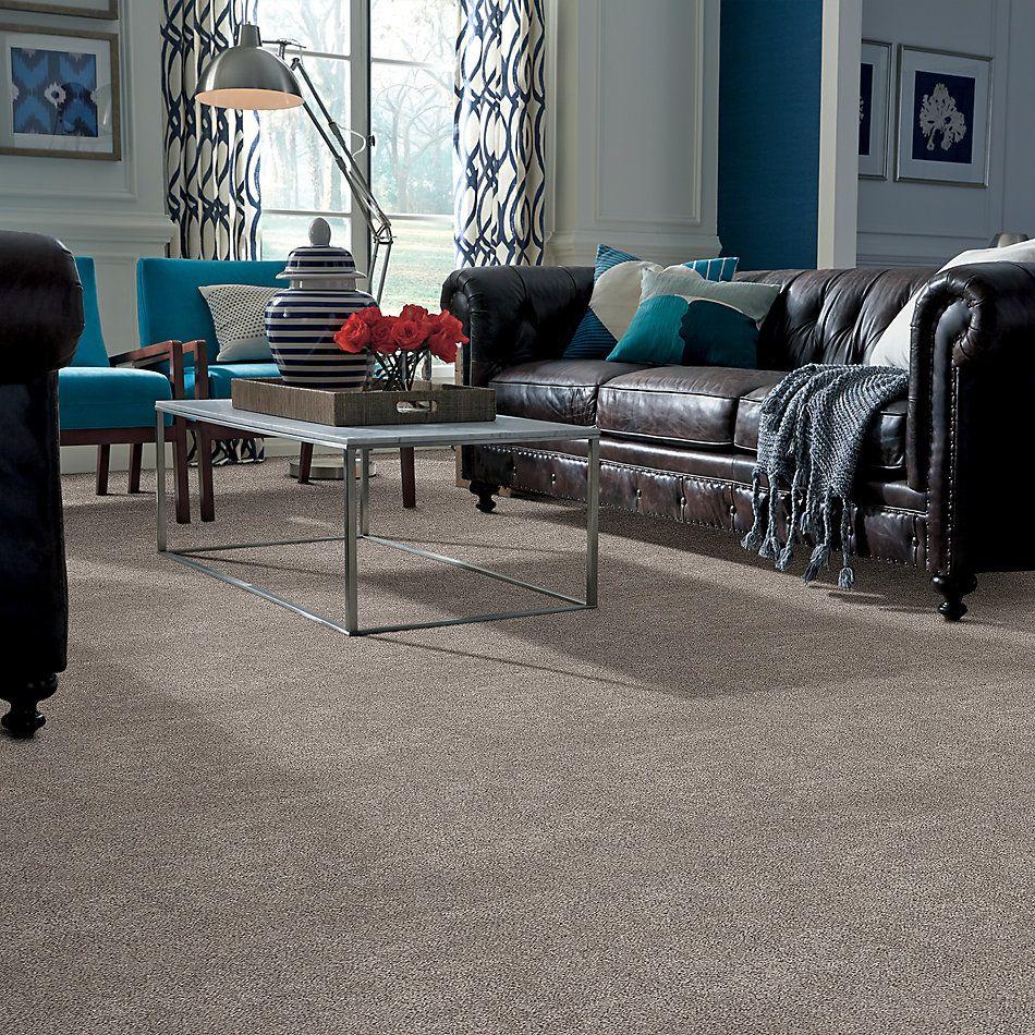 Shaw Floors Calm Embrace II River Run 00700_NA459