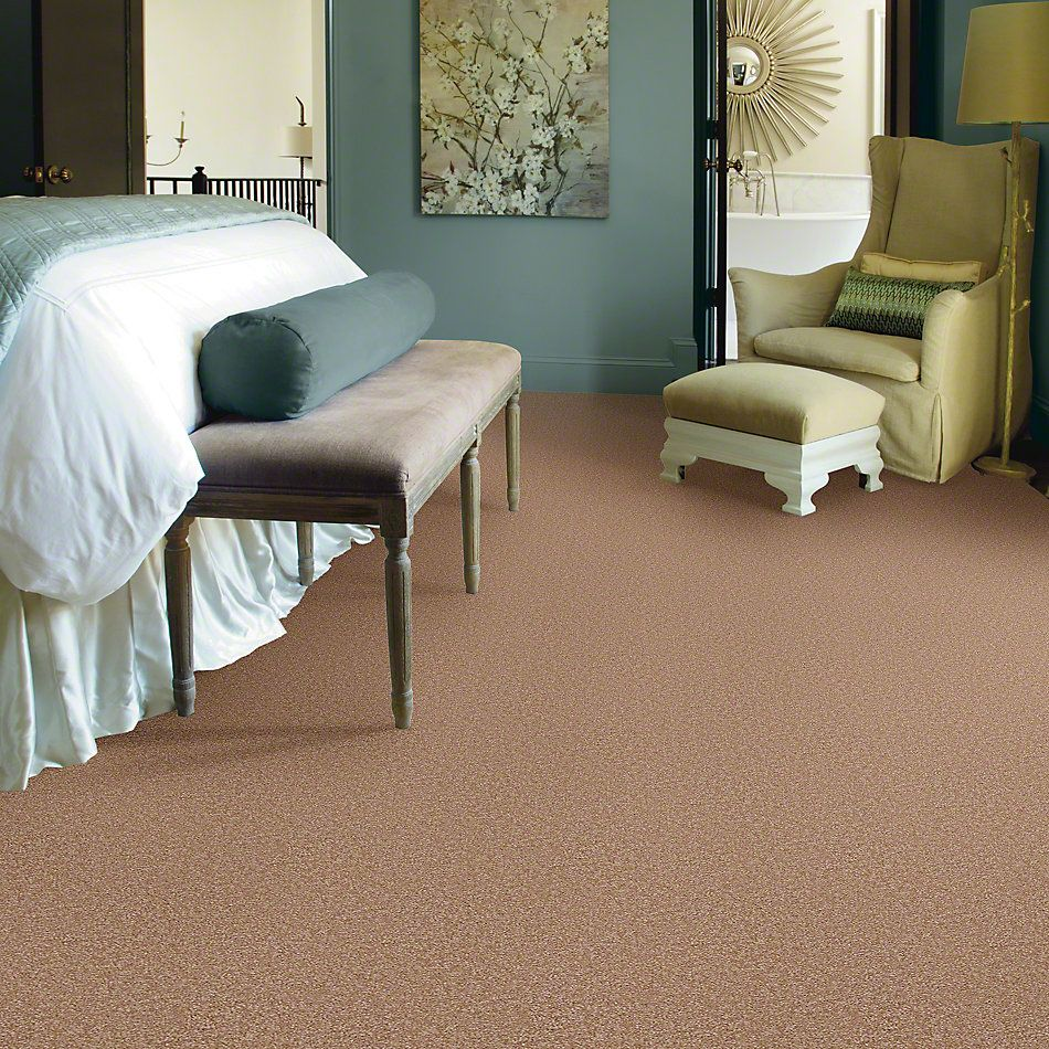 Shaw Floors Shaw Design Center Sweet Valley II 12′ Muffin 00700_QC422