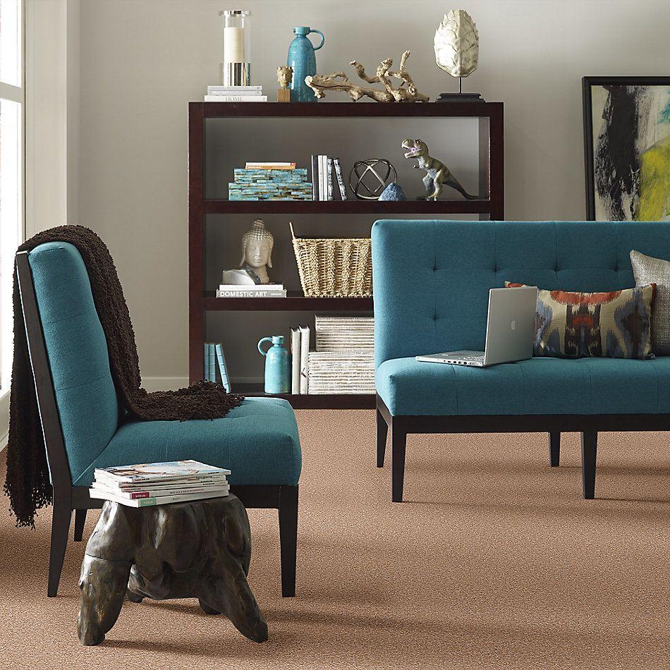 Shaw Floors Shaw Design Center Park Manor 12′ Muffin 00700_QC459