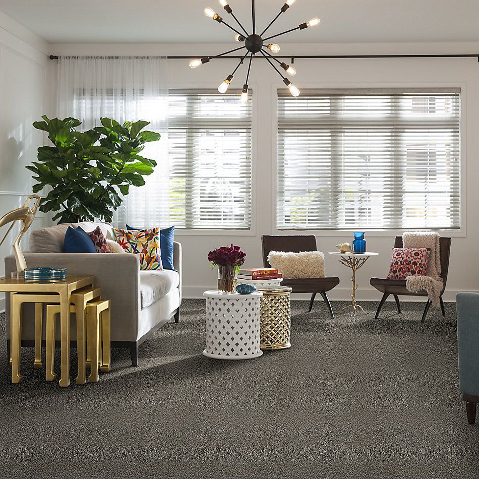 Shaw Floors Venice Beach Bird Bath 00700_SNS43
