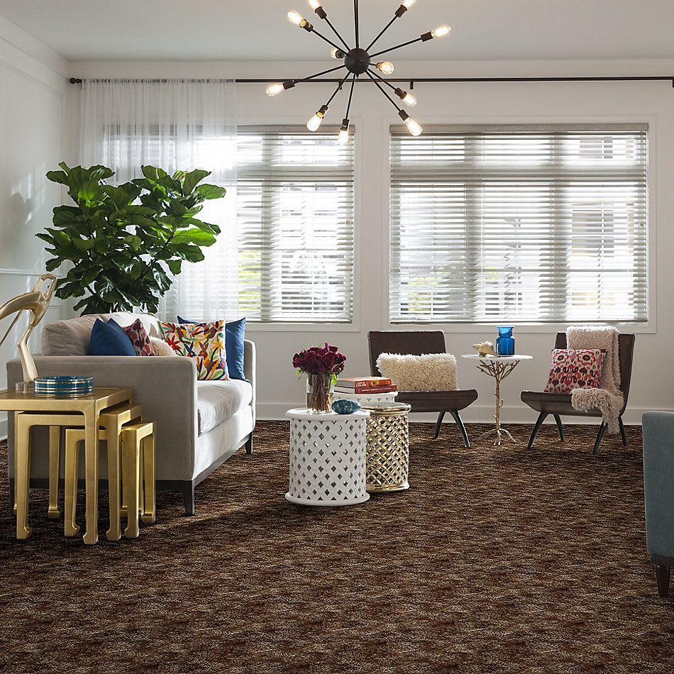 Shaw Floors Shaw On Shelf Cabarete Tumbleweed 00700_SOS37