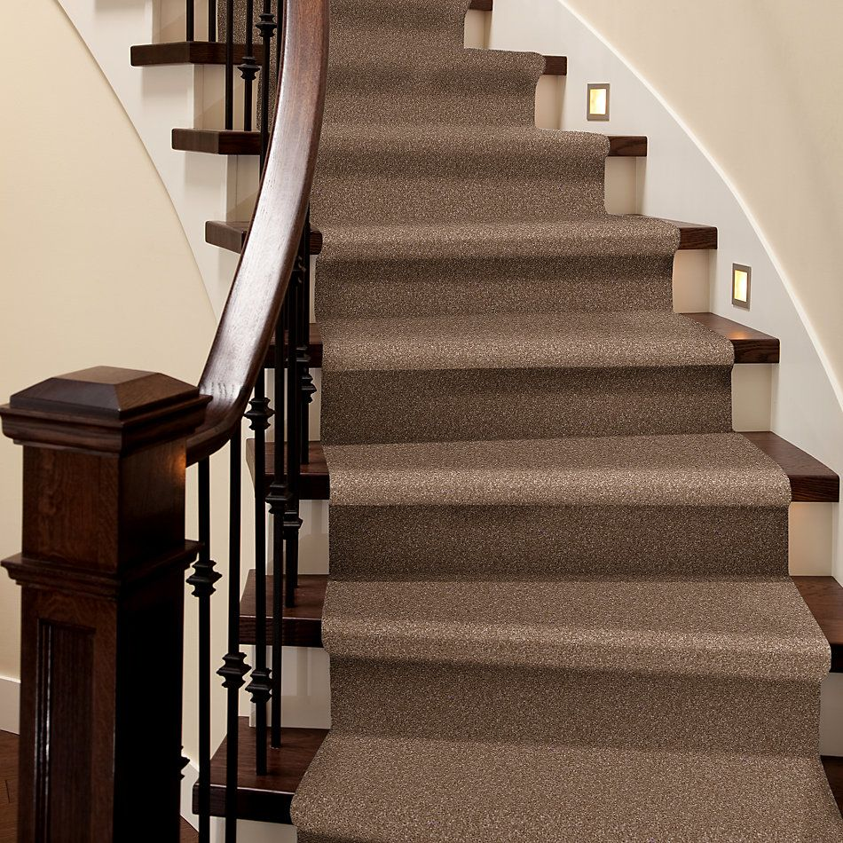 Shaw Floors Roll Special Xv813 Acorn 00700_XV813