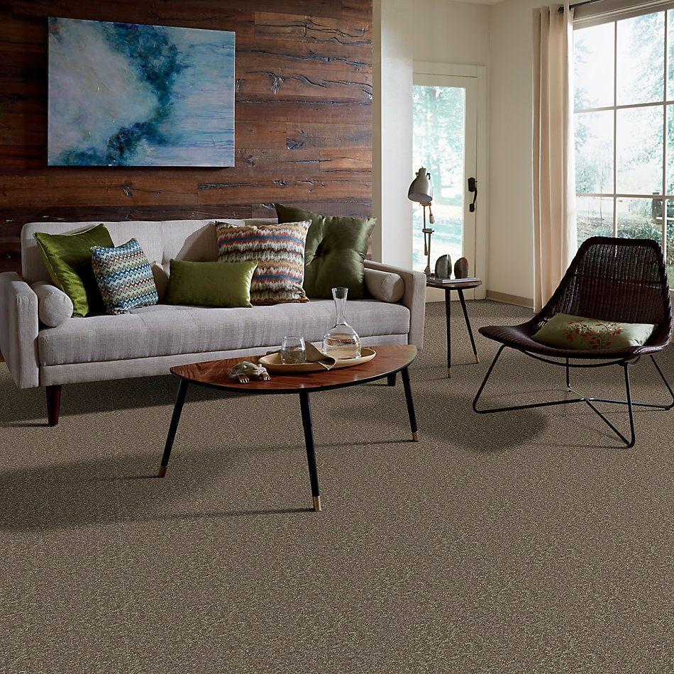 Shaw Floors Roll Special Xv866 Hearth Stone 00700_XV866
