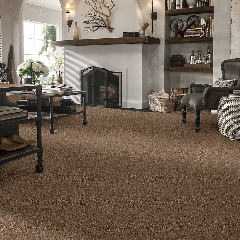 Shaw Floors Town Creek III Ash Blonde 00701_52S32