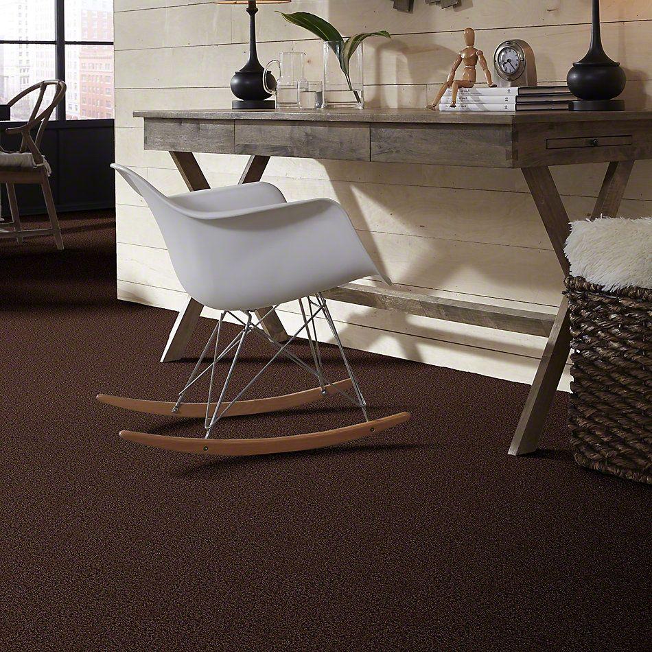 Shaw Floors Shaw Design Center Becoming Dark Fudge 00701_5C521