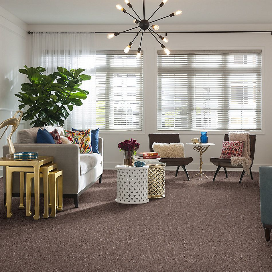 Shaw Floors Shaw Design Center Beautifully Simple I 12 Pebble Creek 00701_5C746