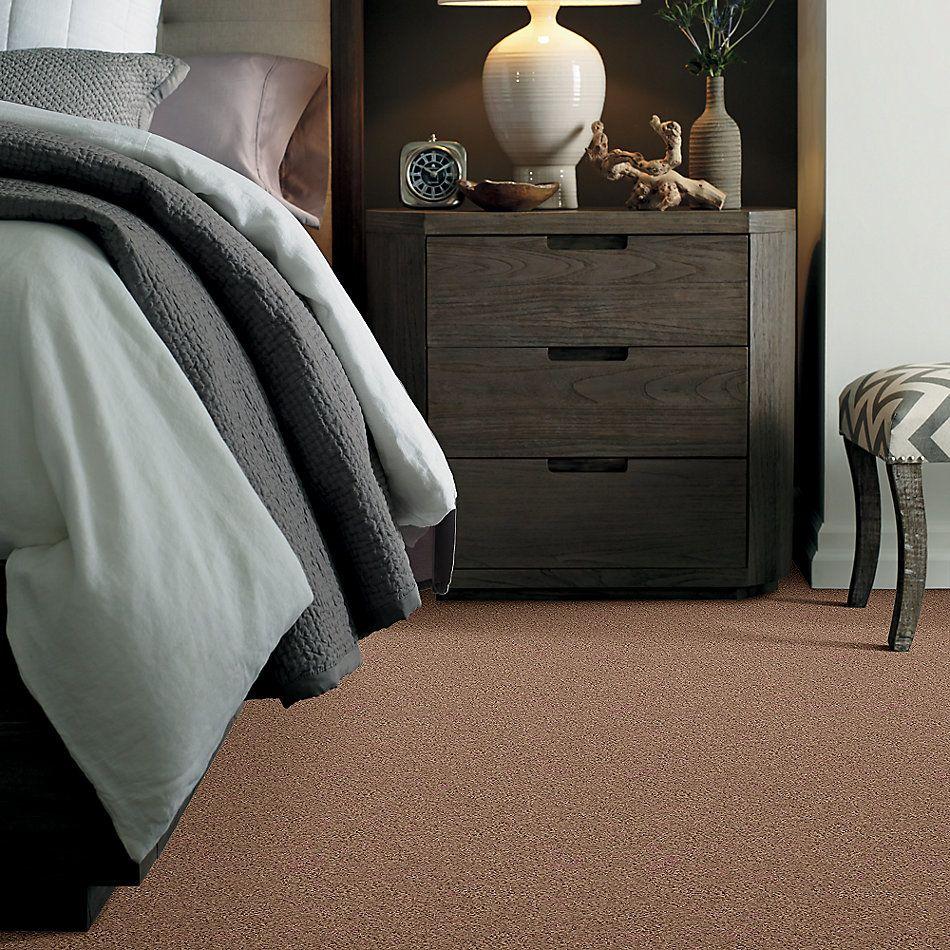Shaw Floors Shaw Design Center Beautifully Simple II 15′ Pebble Creek 00701_5C752