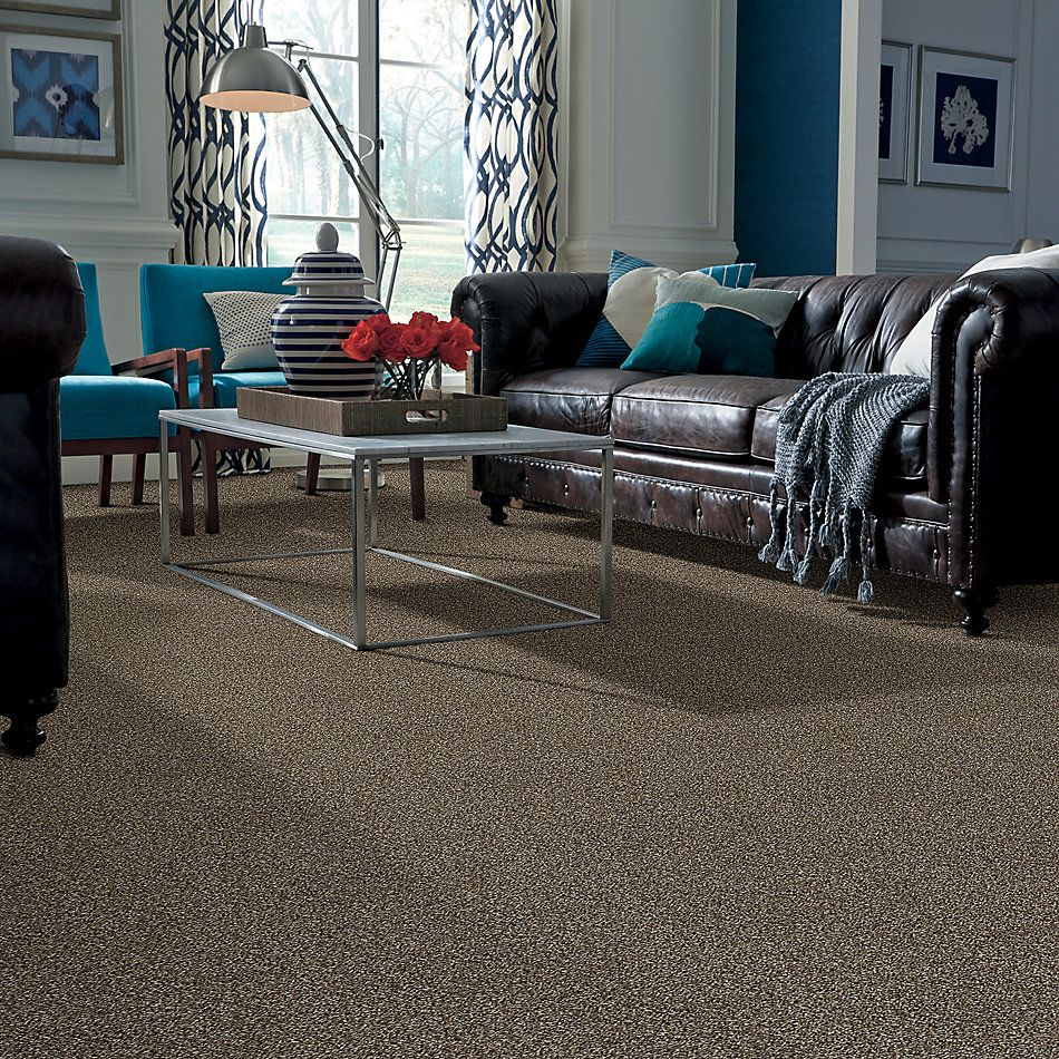 Shaw Floors Value Collections Absolutely It Net Landmark 00701_5E093