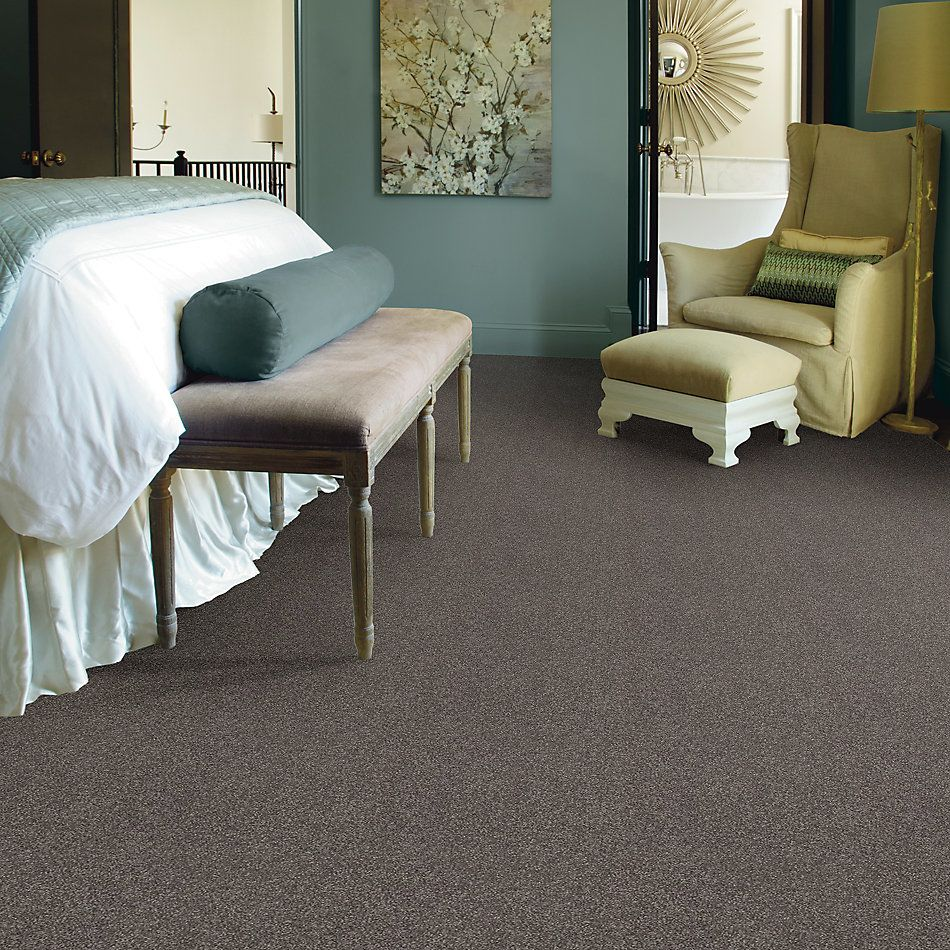 Shaw Floors Simply The Best Solidify I 12′ Pewter 00701_5E262