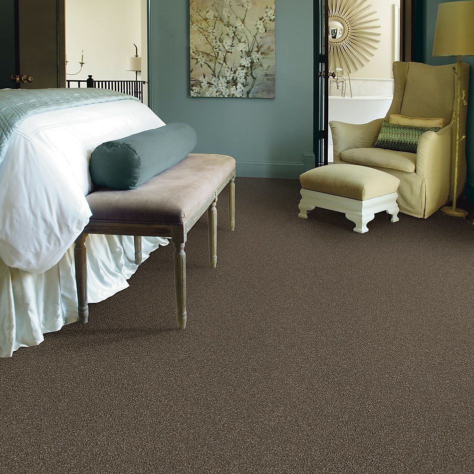 Shaw Floors Simply The Best Without Limits I Net Bountiful 00701_5E507