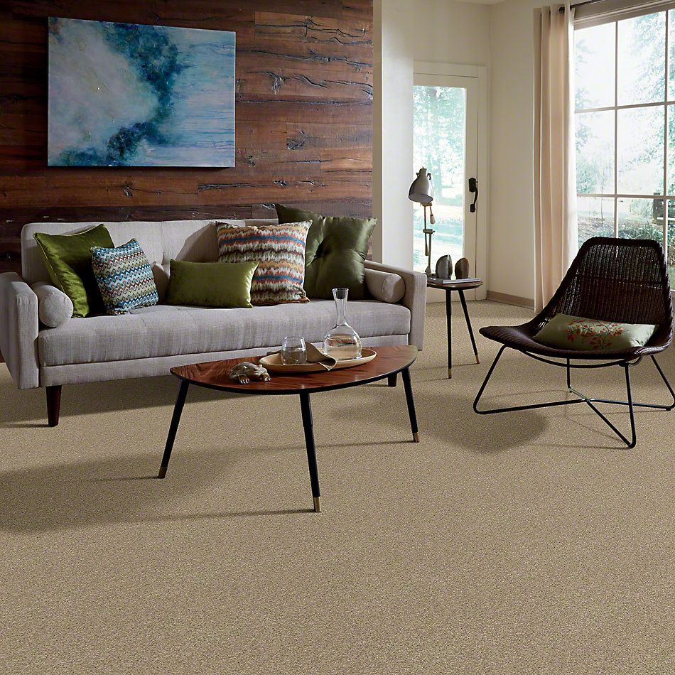 Shaw Floors Caress By Shaw Egmont Llama 00701_CCB61