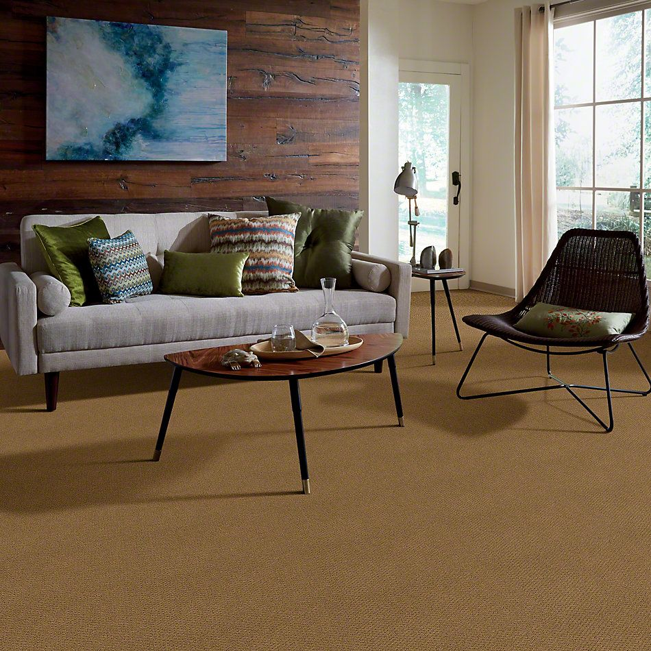 Shaw Floors Timeless Charm Loop Country Wheat 00701_E0405