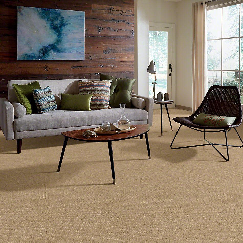 Shaw Floors Genesis Natural Wood 00701_E0525