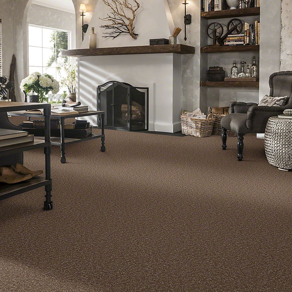 Shaw Floors Value Collections All Star Weekend II 15′ Net Granola 00701_E0815