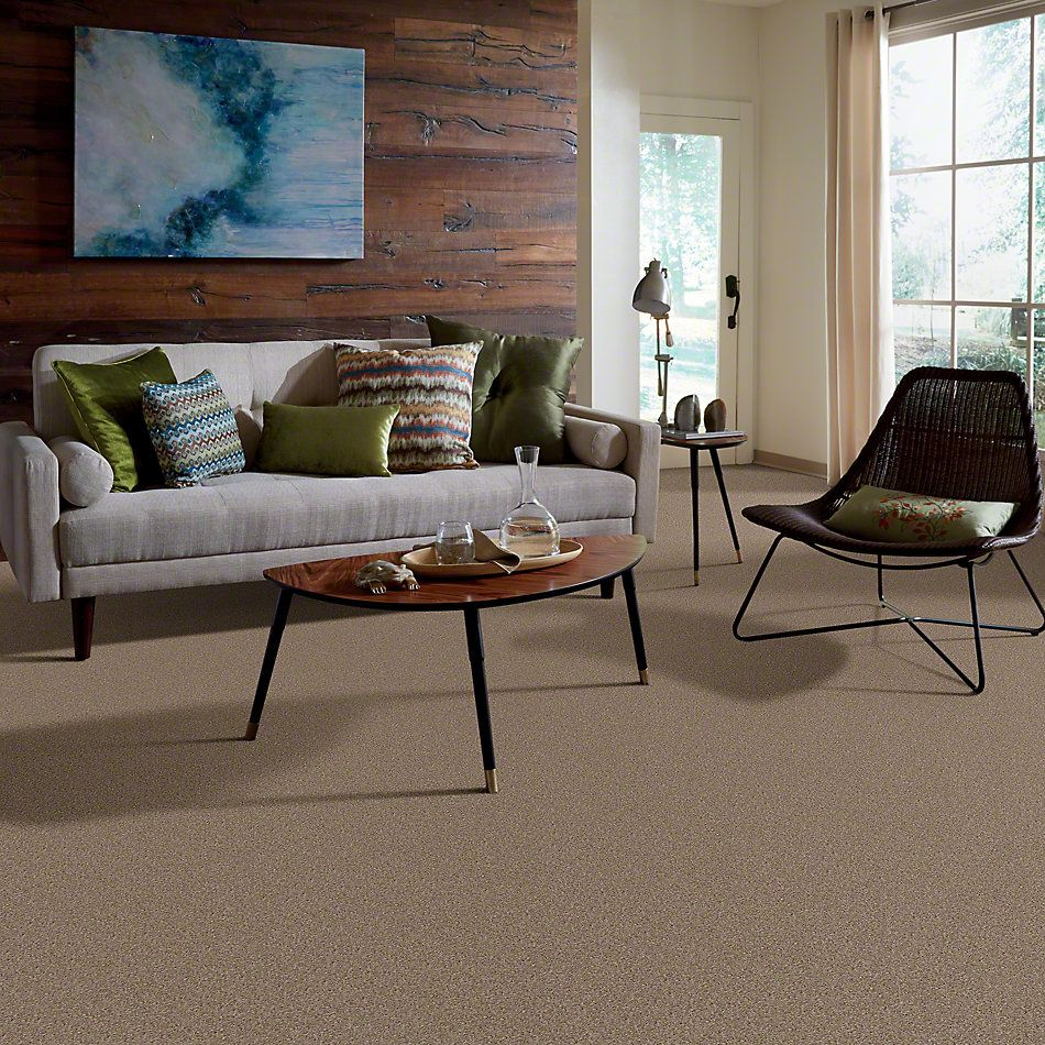 Shaw Floors Make It Yours (s) Bungalow 00701_E0819