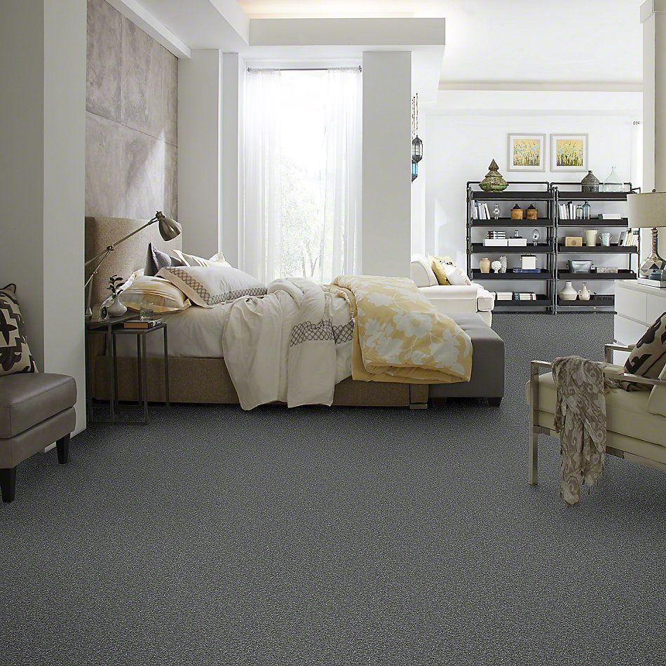 Shaw Floors Something Sweet Slate 00701_E0881