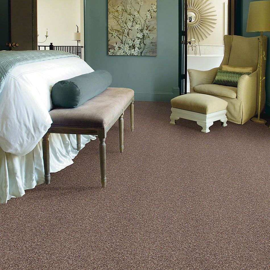 Shaw Floors Value Collections Dazzle Me Texture Net Pecan 00701_E0884