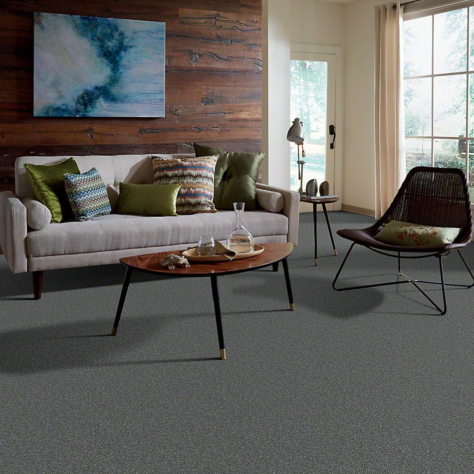 Shaw Floors Value Collections Something Sweet Net Slate 00701_E0924