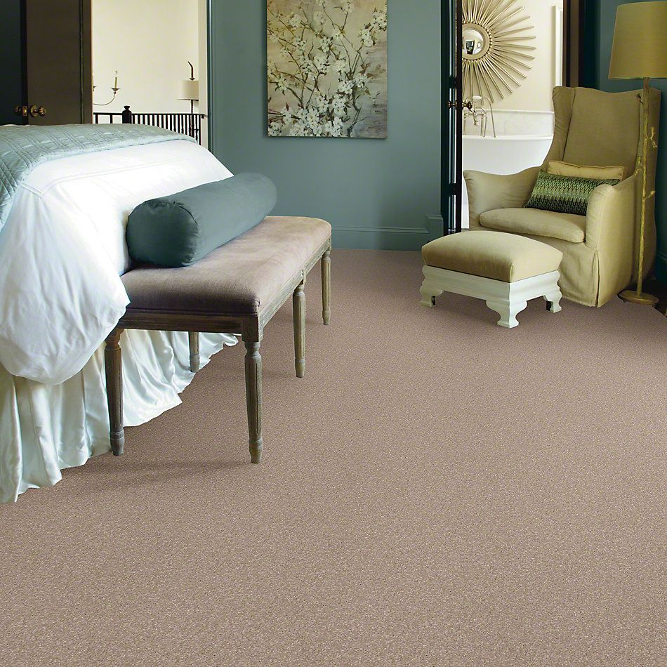 Shaw Floors Value Collections What's Up Net Havana 00701_E0926